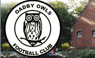 D6 Designs Welshpool Web Design - Oadby Owls FC